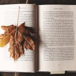 PPT 디자인 컨셉 자료: 가을 느낌