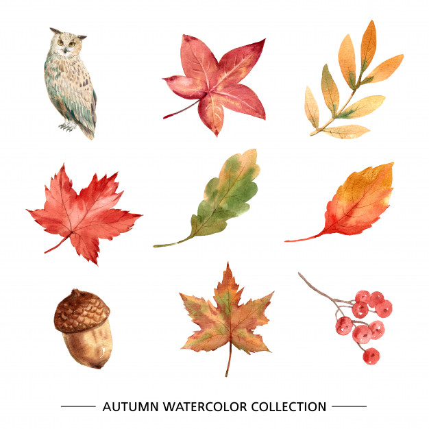 PPT Design Concept: Autumn, Fall